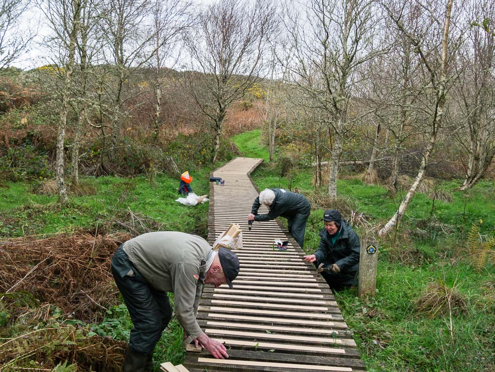 Finishing a Boardwalk at Bodior